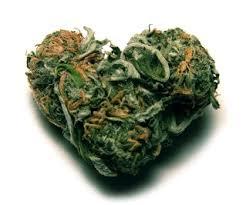 marijuana-hart